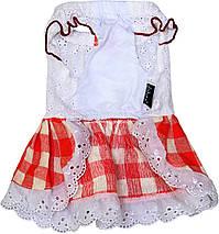 Платье для собак Dobaz Добаз, Toscana красный, фото 3