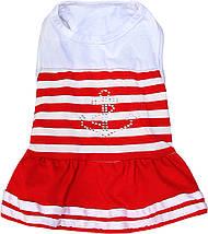 Платье для собак Dobaz Добаз, Caribbean красный, фото 2