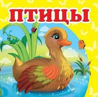 Птицы     ,9786177160242