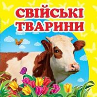 Свійські тварини     ,9786177166299