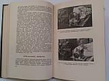 """Б.Поляк """"Военно-полевая офталмология (Боевые повреждения органа зрения)"""". 1953 год, фото 9"""