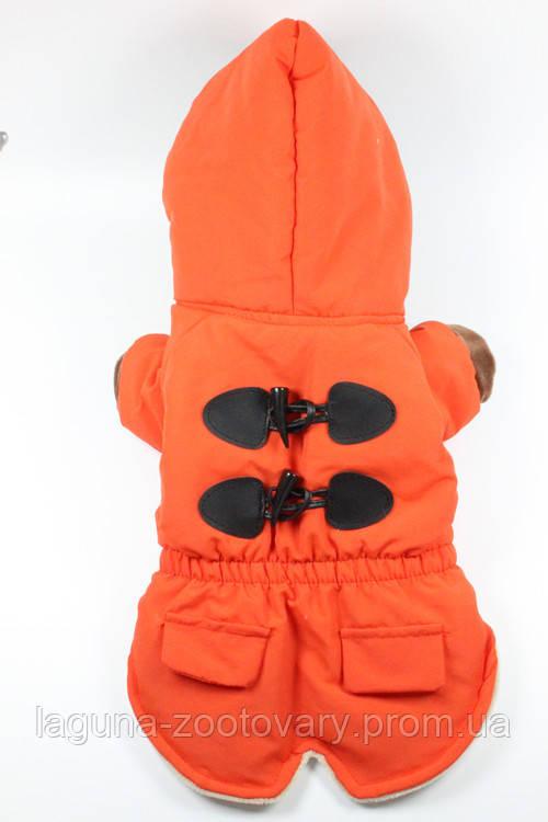 Куртка - пальто БРИСТОЛЬ для собак, размеры XS, S, M, L, XL  оранжевый