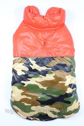 """Куртка """"ФРИДОМ"""" для собак, теплая, оранжевый, размеры  XS, S, M, L, XL, фото 2"""