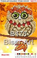 Схема для частичной вышивки бисером - Осенняя сова