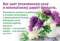 """Карманный календарь """"Бог дает утомленному силу!"""" 2018"""