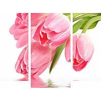 Модульная картина с тюльпанами ТЮЛЬПАНЫ НАД ВОДОЙ из 3 модулей