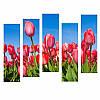Модульная картина с тюльпанами РОЗОВЫЕ ТЮЛЬПАНЫ из 5 фрагментов
