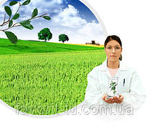 Инокулянт Оптимайз Пульс (BayerCropScience AG)