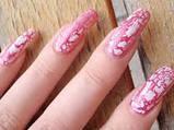 Набір для розпису нігтів Hollywood Nails, фото 2
