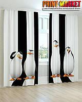 Фотошторы пингвины