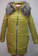 Теплая зимняя женская куртка на замке с капюшоном и меховым воротником салатовая
