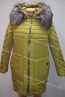 Молодежная женская зимняя куртка стиль 2017 салатовая