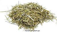 Донник лекарственный трава 100 грамм