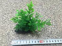 Искусственные растения 220072 (7-9см)