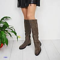 Женские высокие демисезонные замшевые сапоги с металлическим декором сверху
