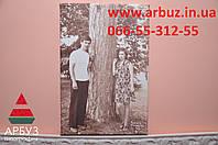 Холст портрет 20х30см - 310грн