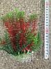 Искусственные растения 024171 (14-17cм)