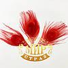 Натуральное крашеное перо павлина 15см, цвет Red, 1шт