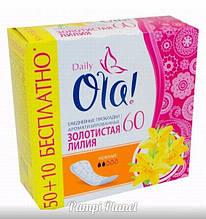Ежедневные прокладки Ola! Daily Золотистая Лилия 60 шт (на 2 капли)