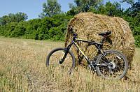 Какой велосипед мне купить?