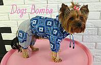 Куртка для собаки синяя с принтом