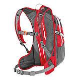 Спортивный рюкзак Ferrino Zephyr 15+3 Lite Red, фото 2