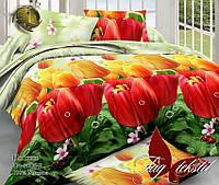 Комплект постельного белья ТМ TAG двухспальный, постельное белье двухспальное TM-1006Z