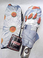 Яркий осенний зонт-автомат