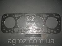 Прокладка головки блока Д 65 (пр-во Украина) Д65-02с12