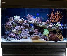 Морской аквариум 250 л Red Sea Max 250 , фото 3