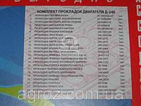 Ремкомплект двигателя Д 240 (24 наим.) (полный комплект) (пр-во Украина) Р/К-100240