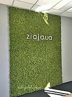 Стены,потолки ,колоны из стабилизированного мха от Студии Зеленка