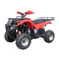 Квадроцикл SkyMoto LEOPARD 150 ATV