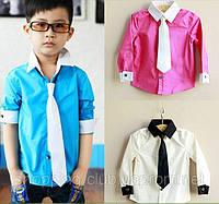 Стильная рубашка  с галстуком на мальчика ДО-33-О, фото 1