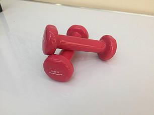 Гантели виниловые IronMaster 0,5 кг, фото 2
