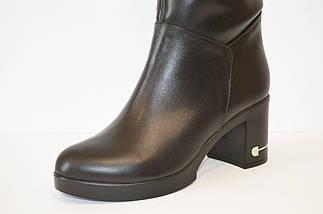 Сапоги женские кожаные El Passo 1580, фото 2