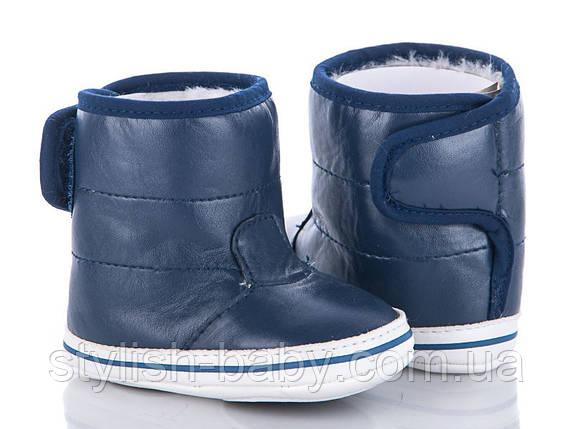 e259b0fc8 Детская зимняя обувь оптом. Детские зимние пинетки бренда Clibee - Caleton  для мальчиков (рр. с 18 по 21)