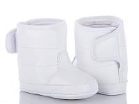 Детская зимняя обувь оптом. Детские зимние пинетки бренда Clibee - Caleton (рр. с 18 по 21)
