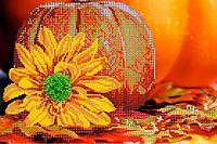 Схема для вышивки бисером POINT ART Осенние радости, размер 30х20 см