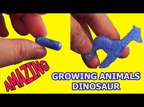 Животные, растущие в воде Amazing Capsule Creatures Dinosaurs, фото 2