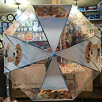 """Детский зонт трость Star Rain """"Собачки 6"""" полуавтомат, 8 спиц"""
