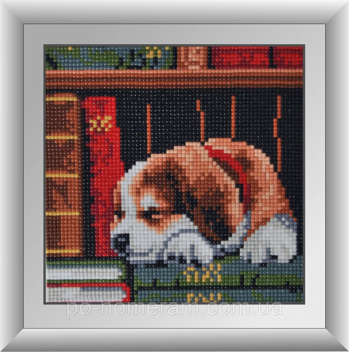 Алмазная мозаика Dream Art Щенок на книжной полке (без коробки) (DA-30342M) 17 х 17 см (Без подрамника)