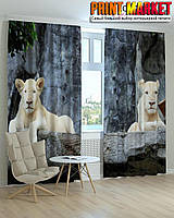 Фотошторы львы 3d