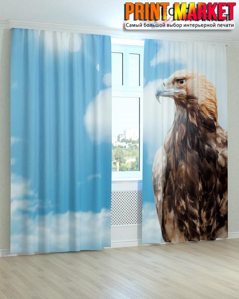 Фотошторы горный орел