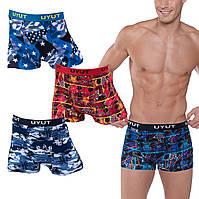 Мужские боксеры Uyut 8501 3XL 52-54. В упаковке 6 трусов