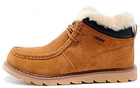 Зимние мужские ботинки Caterpillar Winter Boots на меху