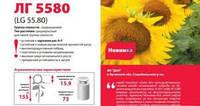 Семена подсолнечника ЛГ 5580 (оригинал)