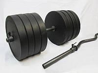 Гантели 2 шт по 40 кг + W гриф