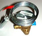 Силовий елемент ТРВ Alco controls XB 1019 HW 100-1B (803043), фото 2