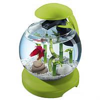 Аквариум Tetra Cascade Globe для петушка и золотой рыбки, 6.8 л